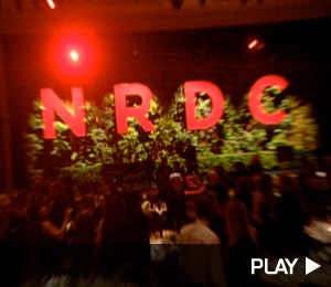 Going Green with the NRDC