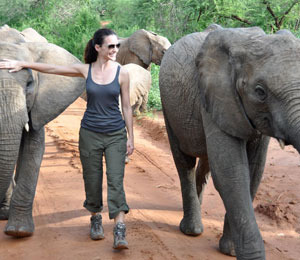 Kristin Davis Saves a Young Elephant!