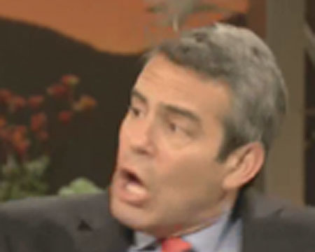 'Real Housewives' Host Andy Cohen Attacked by Bird