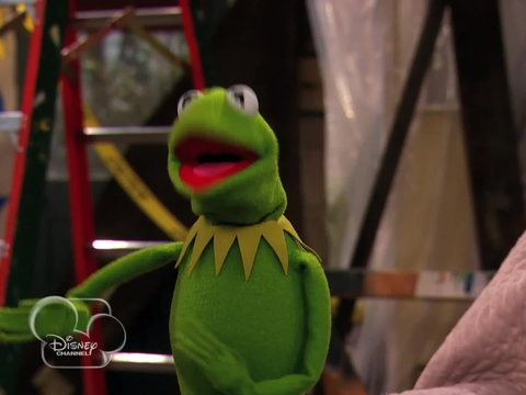 Muppets Guest Star on 'Good Luck Charlie'