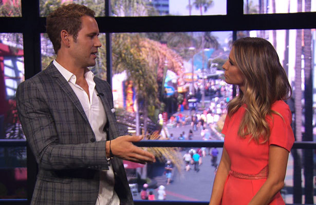 'Bachelorette' Nick Viall: 'I Said What I Had to Say'