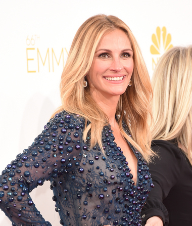 Emmy Awards 2014: Watch Jimmy Fallon Crash 'Extra's' Interview with Julia Roberts!