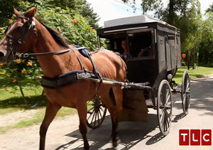'Breaking Amish' Sneak Peek! Vonda Moves Out of Parents' Home... in a Horse and…
