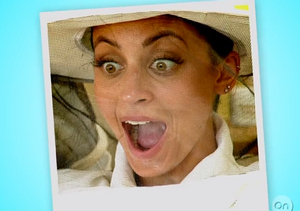 Video! Nicole Richie Puts the Buzz in Beekeeping