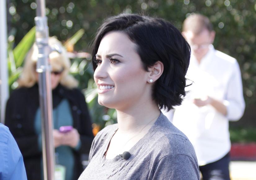 Demi Lovato's Super Cute Haircut Is a Hit!