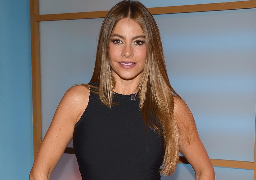 Sofia Vergara Responds to Ex Nick Loeb's Frozen Embryo Claims