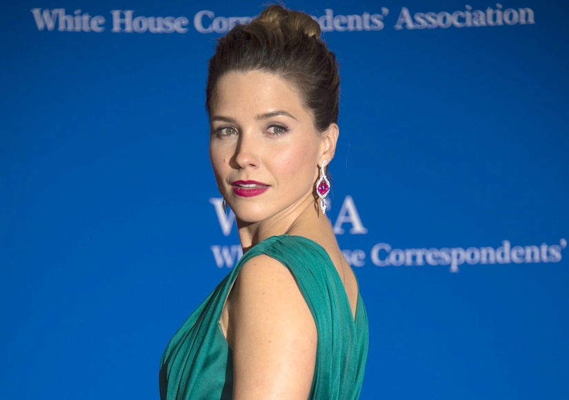 Radiant Sophia Bush Puts on a Brave Face at WHCD