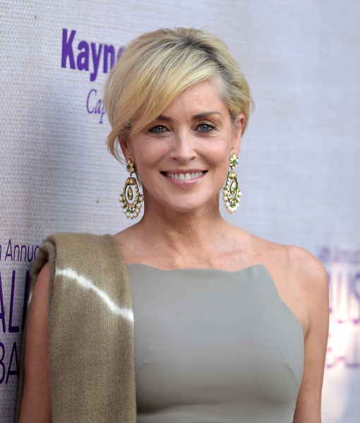 Sharon Stone Supports Hillary Clinton for President, Talks New Show 'Agent…