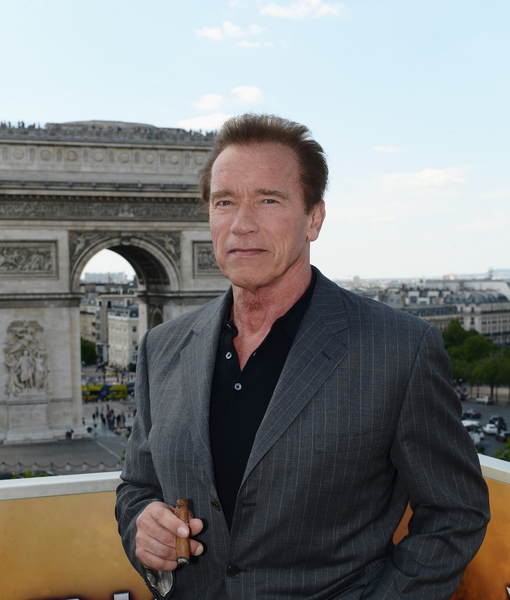 Arnold Schwarzenegger Reveals He Tried to Save Marriage with Counseling:…