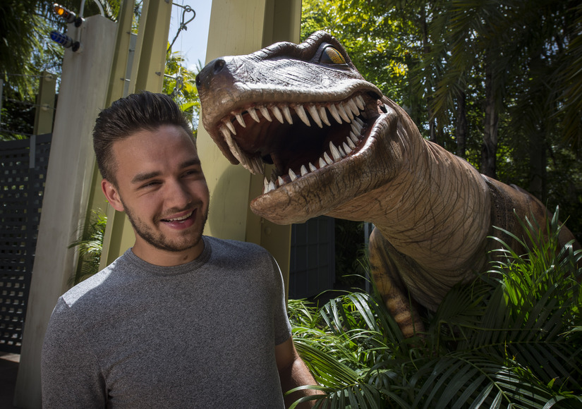 One Direction's Liam Payne Hits Universal Orlando Resort!