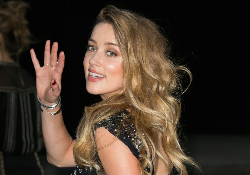 Amber Heard Charged with Dog Smuggling in Australia