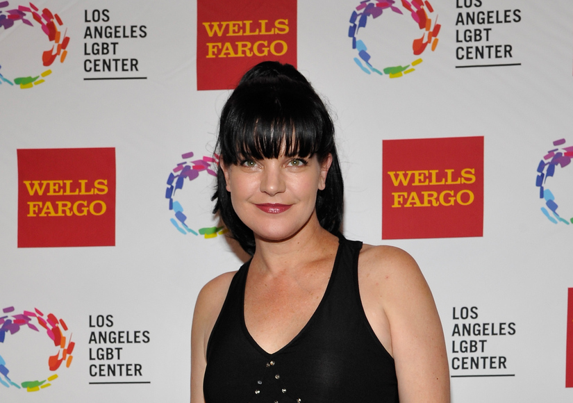 'I Almost Died Tonight': Pauley Perrette Assaulted, Homeless Man Held on $100K Bail
