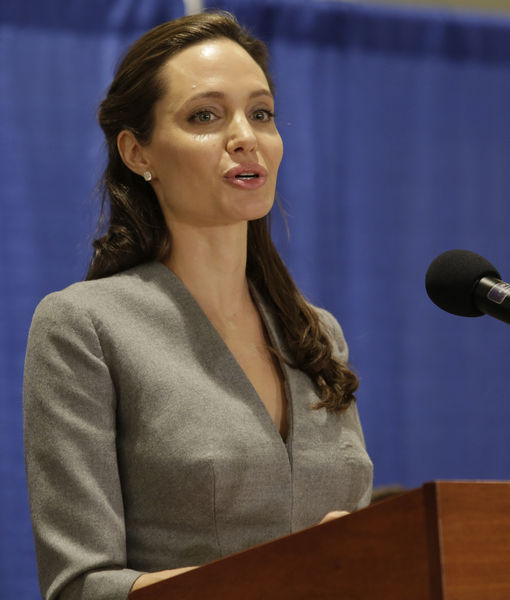 Angelina Jolie's Latest Role: Professor