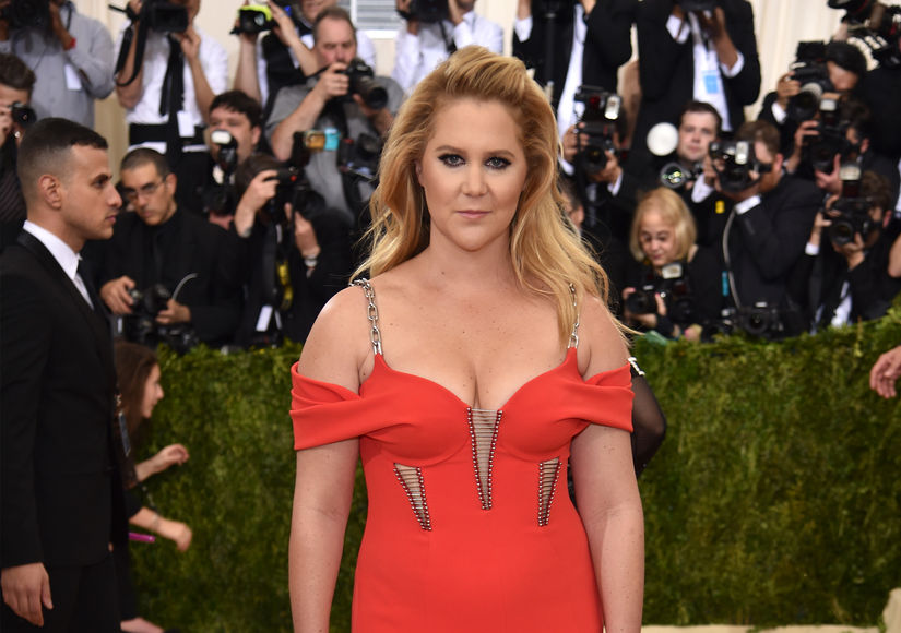 Amy Schumer Moves on from Ben Hanisch — Who's She Dating?