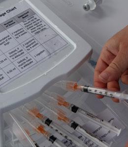 Will You Get the Swine Flu Vaccine?