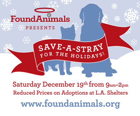 Save-A-Stray for the Holidays