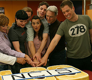 Just the Facts, Please: The Cast of 'NCIS'