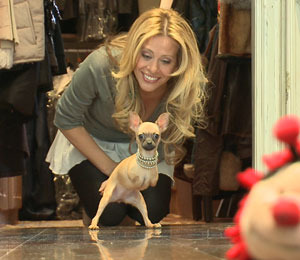 Are You Ready to Party with Dina Manzo?
