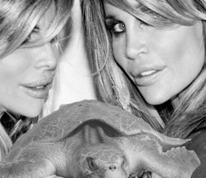 Barbi Twins Battle BP to Save Sea Turtles