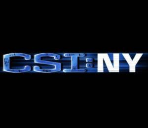 'CSI: NY' (CBS)