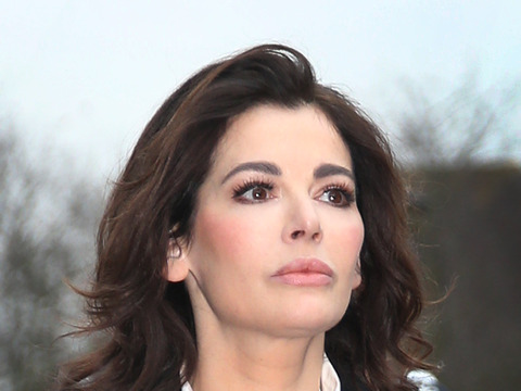 World War Ex! Nigella Lawson Claims Ex-Husband Wanted to 'Destroy' Her