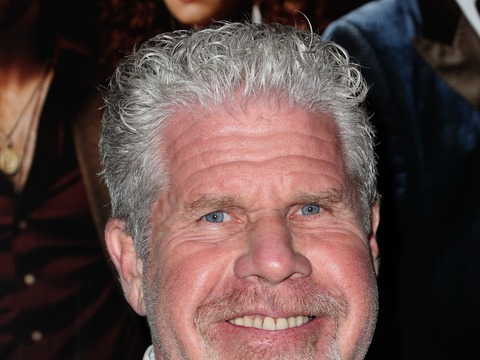 Ron Perlman Talks 'Crave,' 'Sons of Anarchy'… and How We Need…