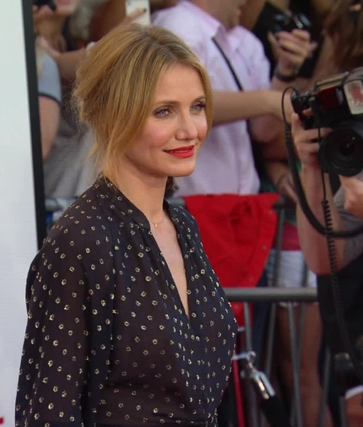 Why Cameron Diaz and Jason Segel Didn't Bring Dates to Their 'Sex Tape' Premiere