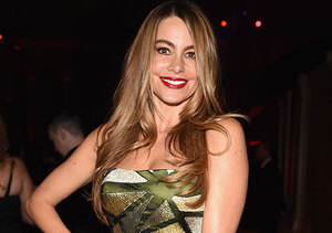 Sofia Vergara Is Open to Remarrying: 'It Would Be Fun to Do It Again!'