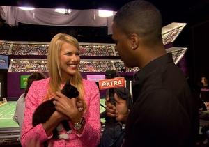 Beth Stern Gets Us Ready for 'Kitten Bowl II'