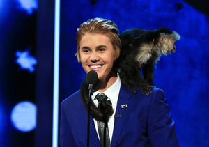 Justin Bieber Gets Roasted!