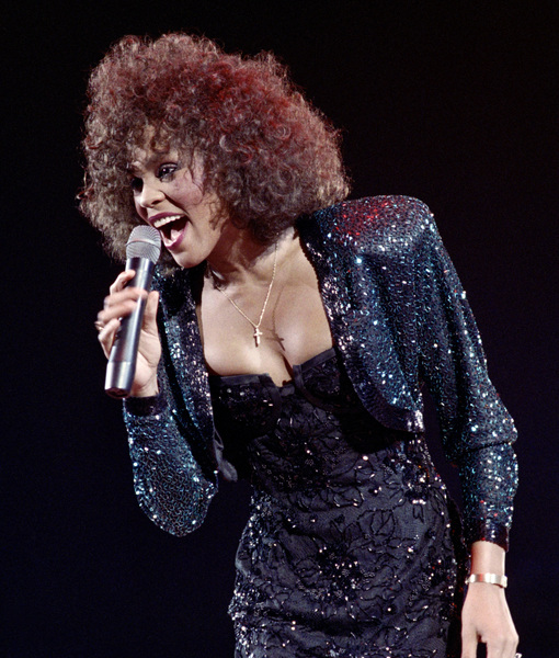 Explosive Claims About Whitney Houston's Rumored Bisexual Relationship in New…