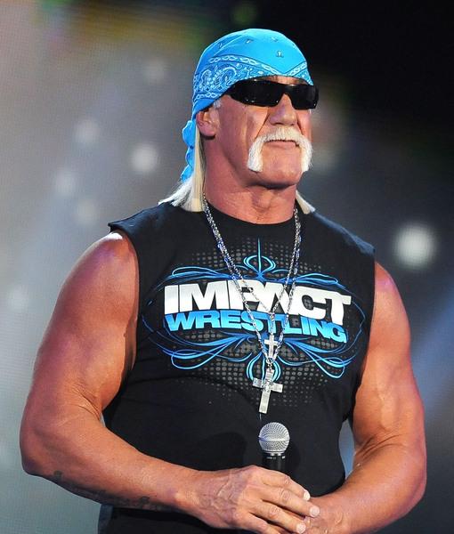 Hulk Hogan Apologizes for Racist Slurs