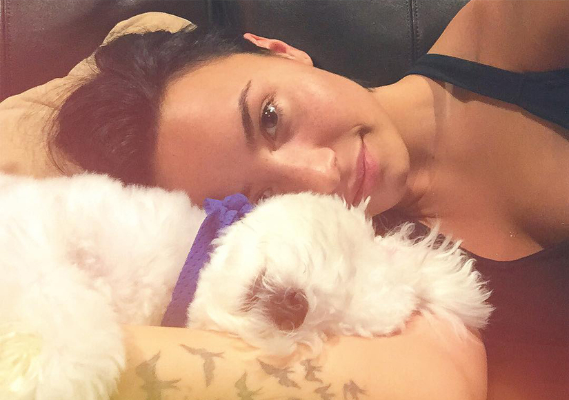 Demi Lovato's Dog Buddy Killed By Coyote
