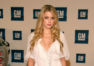 Who Was Amber Heard Before Johnny Depp?