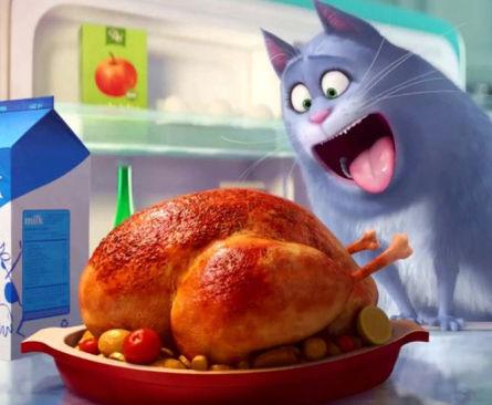 Box Office Rolls Over for 'Secret Life of Pets' — Massive Debut