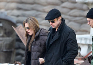 Brad & Angelina's Alleged Fight: Travel Plans, Plane Details, and Photos