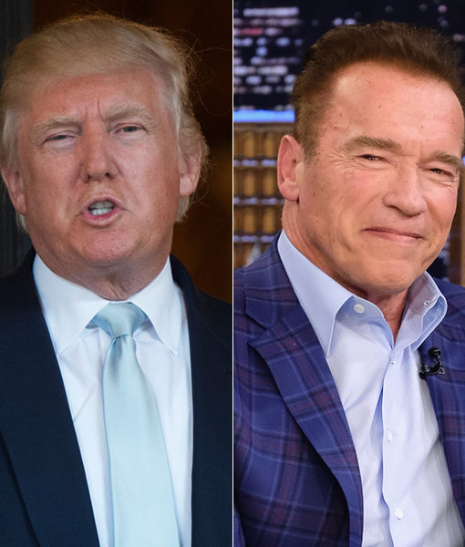 Arnold Schwarzenegger Weighs In on President Trump's Immigration Ban: 'It's Crazy'