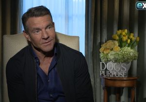 Dennis Quaid on 'A Dog's Purpose' Controversy: 'There Was No Abuse of Animals'