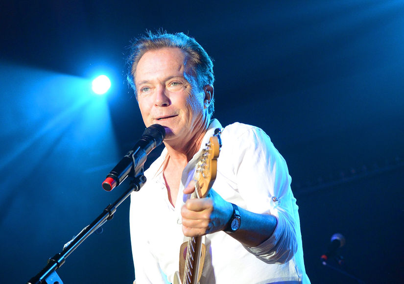 David Cassidy Falls Off Stage During Farewell Concert — Was He Drunk?