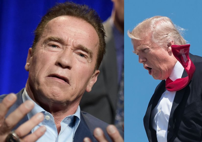 Trump & Schwarzenegger War on Twitter — Bad Ratings, Bad Blood