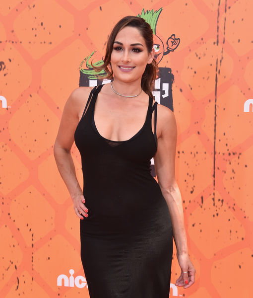 Is Nikki Bella Joining 'Dancing with the Stars' Season 25?