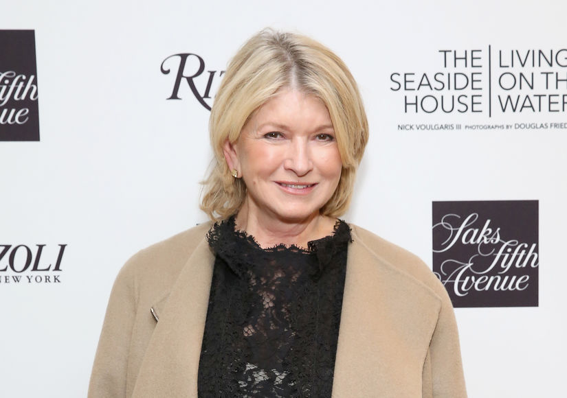 martha stewart's loss reputation Martha stewart's lost reputation situation martha stewart, americas most popular homemaker got into a controversy wherein she was accused of insider trading after she sold her shares from imclone before the day when the prices of the share dropped.