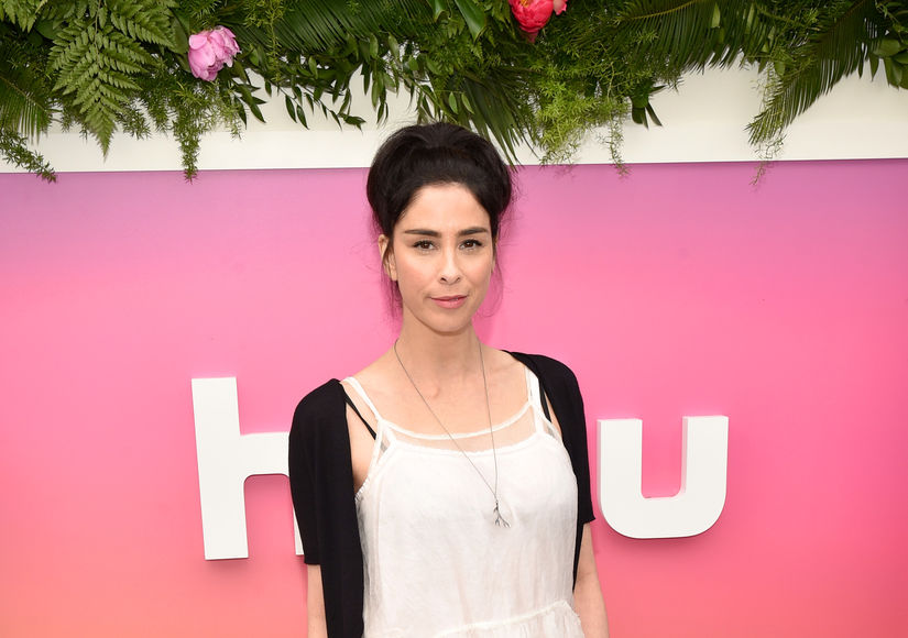 Sarah Silverman Supports Ex Jimmy Kimmel After His Tear-Jerking Revelation About Son's Heart Condition