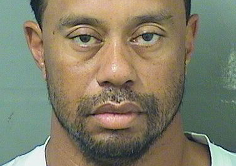 Tiger Woods' First Words Following Arrest
