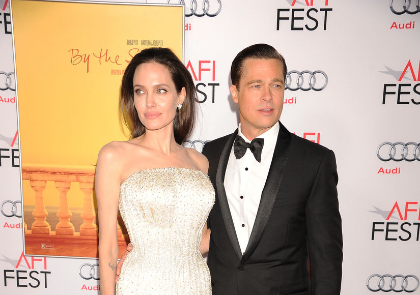 Rumor Bust! Brad Pitt & Angelina Jolie's Kids Are Not Demanding Their Own Zoo