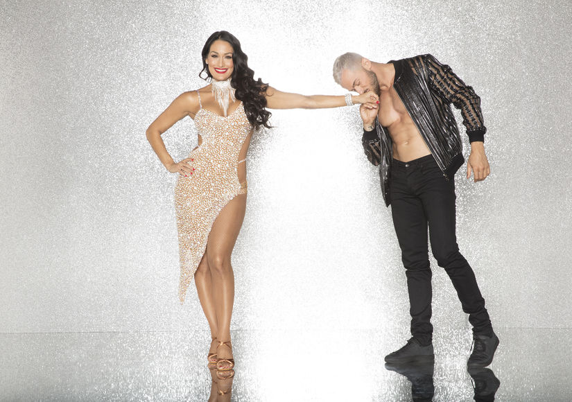 Terrell Owens, Derek Fisher, Nikki Bella Join 'Dancing with the Stars' Cast