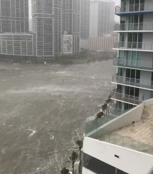 Irma Ravages Florida