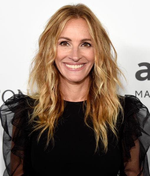 Julia Roberts Honored by amfAR for AIDS Work: 'We Can Always Use More Kindness'