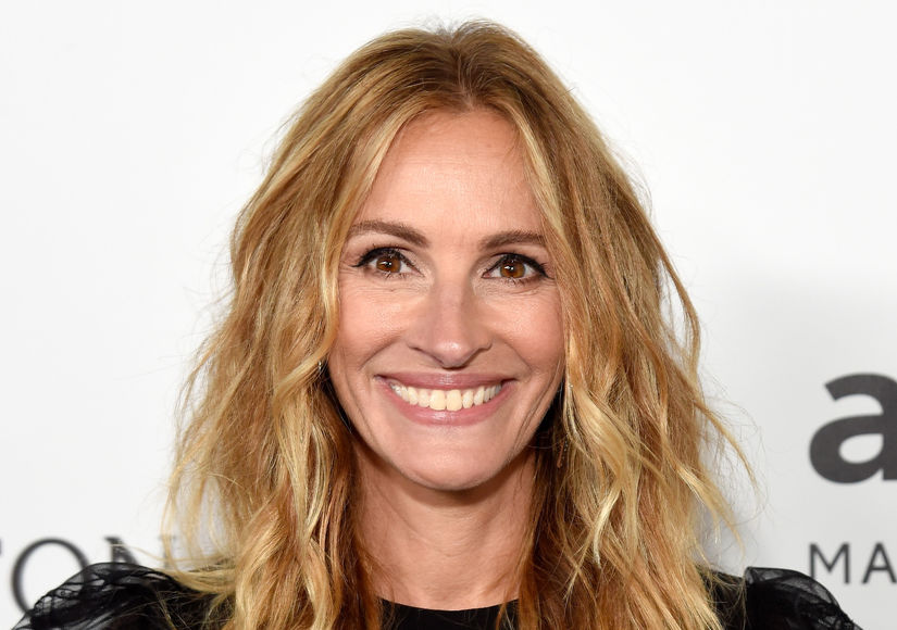 Julia Roberts Honored for AIDS Work: 'We Can Always Use More Kindness'
