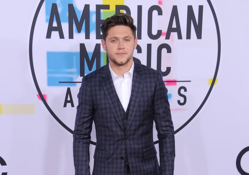 See One Direction's Niall Horan Take Our Mystery Bowl Quiz at the AMAs
